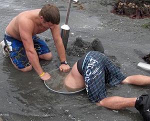 Digging_for_geoducks