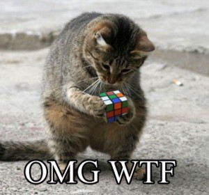 cat-with-rubics-cube